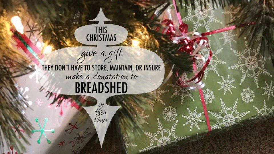 give a gift to Breadshed this Christmas